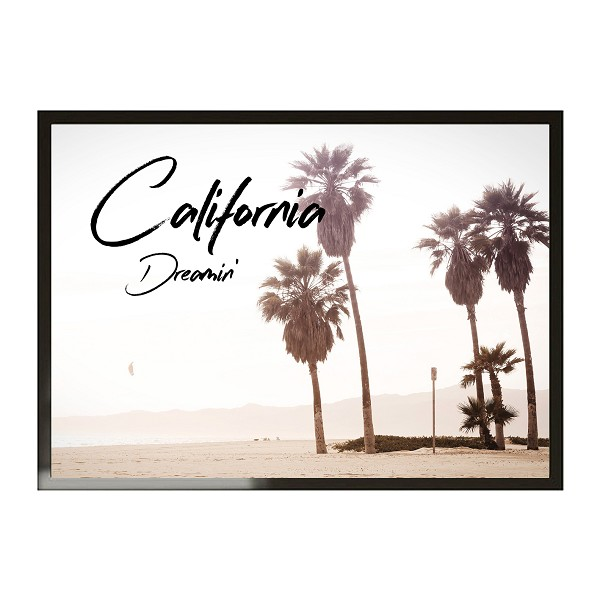 A3 CALIFORNIA DREAMIN'